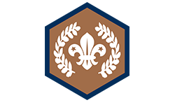 Chief-Scout's-Bronze-Award