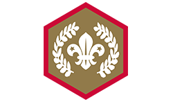 Chief-Scout's-Gold-Award